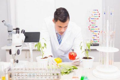 食の安全「ハサップ(HACCP)」導入加速 政府が関連法を改正のサムネイル画像