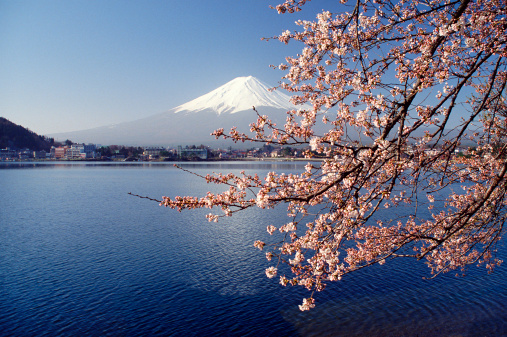 日本国債の金利はフェアバリューの近辺―SG証券チーフエコノミスト・会田氏のサムネイル画像