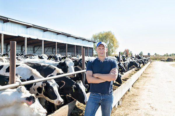 2020年までに全燃料の14%をバイオ化「牛糞バイオ燃料プロジェクト」ーー蘭