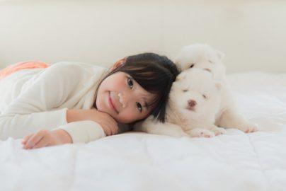 中国ペット市場は高成長続く 高学歴者、若い女性がけん引のサムネイル画像