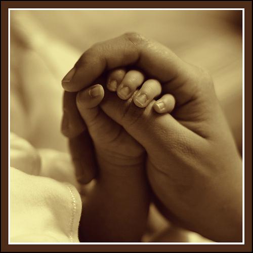 介護、育児、健康…困った時に備えて知っておきたい『生命保険の付帯サービス』のまとめのサムネイル画像