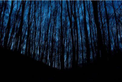 『ブレア・ウィッチ』公開!低予算でリターンが多かった映画5選のサムネイル画像