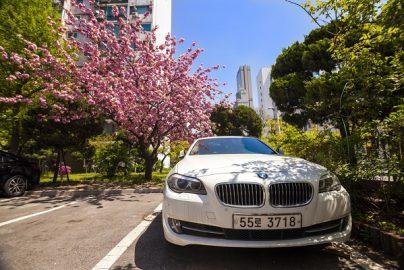 ベンツ47%増、BMW60%増……韓国で高級輸入車販売が増加している3つの理由のサムネイル画像
