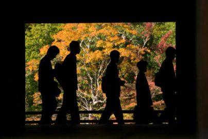 訪日客、最多268万人 個人客が増加すると・・・のサムネイル画像