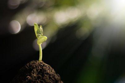 【投資のヒント】据え置かれた会社予想が大きく上振れそうな銘柄はのサムネイル画像