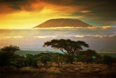 「おもしろETF」3選 投資対象にクウェート、ケニア、ヨルダン……のサムネイル画像