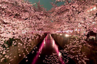 「世界で最も生活費の高い・低い都市」トップ・ワースト10発表、日本の2都市ランクインのサムネイル画像