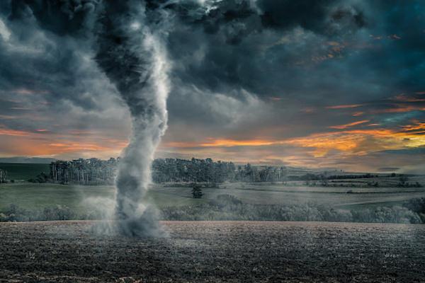 火災保険,自然災害