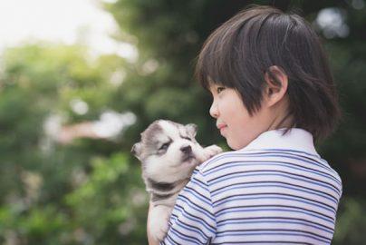 愛媛銀行による社会貢献 動物にも環境にもやさしい2つの活動とはのサムネイル画像