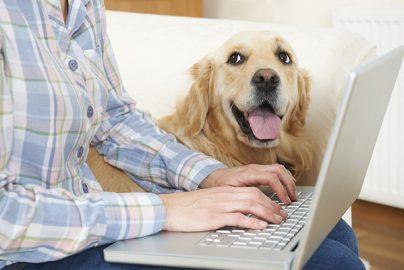 「ペット保険」は本当にお得なの? 実際に検証してみたのサムネイル画像
