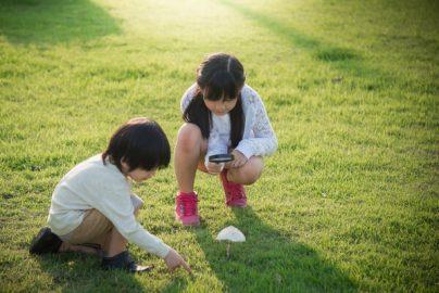 「子育ては孤独」 利用したほうが良いオトクな支援制度のサムネイル画像