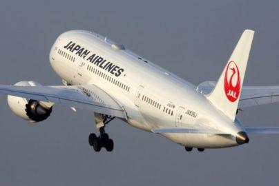 日本の農作物を海外へ  JAL、ベンチャーと提携 株価への影響度は?のサムネイル画像